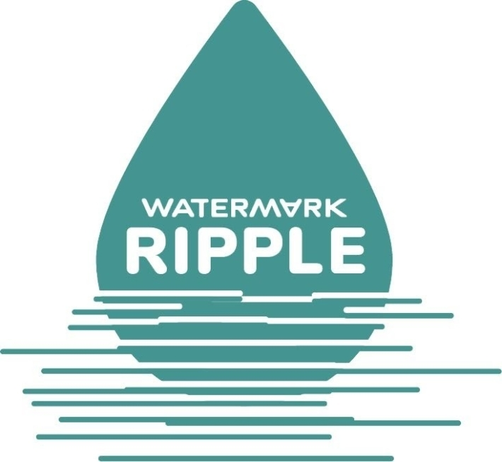 Watermark Ripple Commuity Support During a Crisis 1